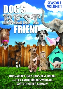 Dog's Best Friend: Season 1 Volume 1
