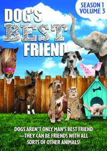 Dog's Best Friend: Season 1 Volume 3