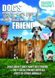 Dog's Best Friend: Season 2 Volume 1
