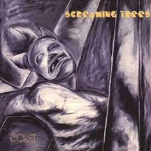 Screaming Trees - Dust: Expanded Edition